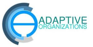 AdaptiveOrganizations